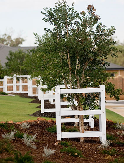 MC-landscape-architecture-Commercial-Helena Valley 1 Main