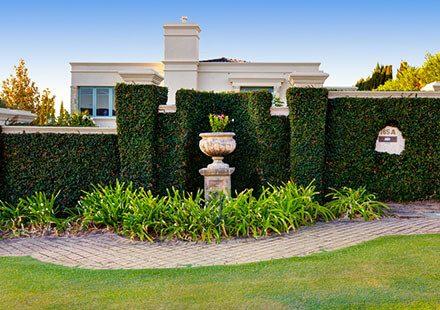 mc-landscape-architecture-garden-maintenance-waratah-main