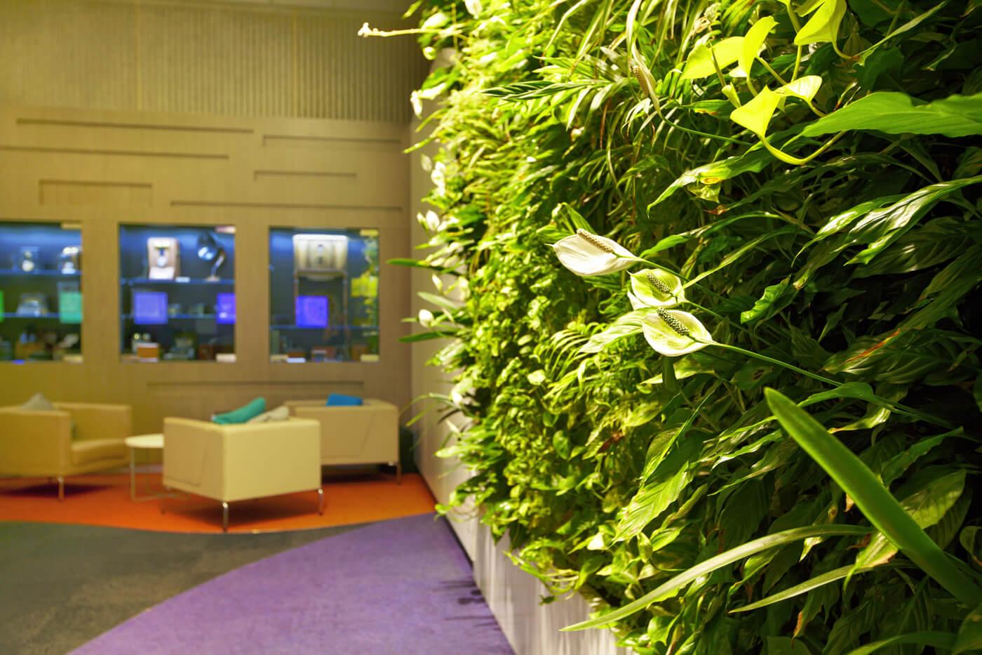 Vertical Gardens Amp Roof Gardens Martin Cuthbert